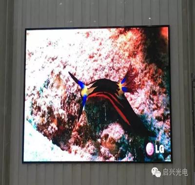 武汉启兴光电承制--黄石 X X X智能股份公司室内P4全彩显示屏交付使用!